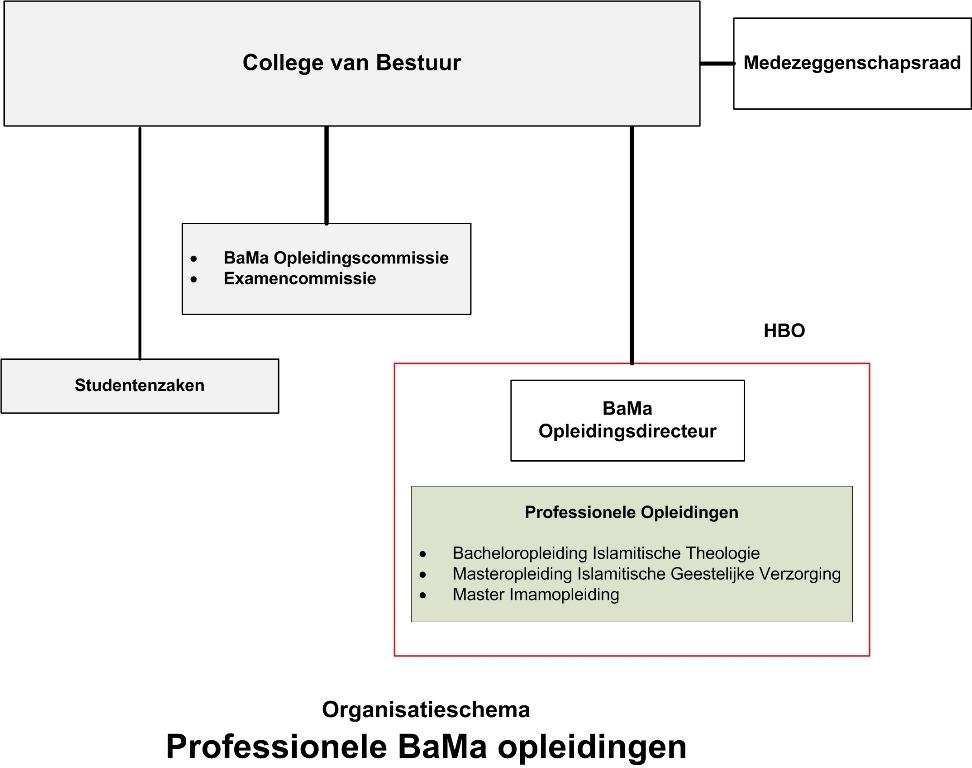 bama-organisatie-nl5-1